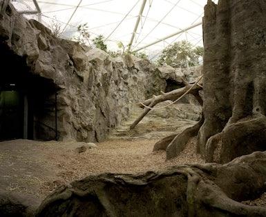 Franklin Park Zoo – New Exhibits